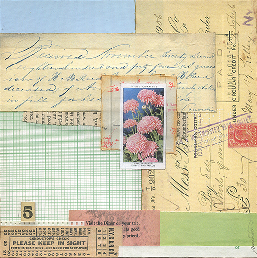 Chrysanthemum by Pamela Towns